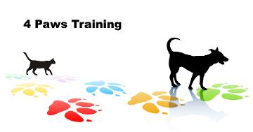 how to become a certified dog behavior consultant